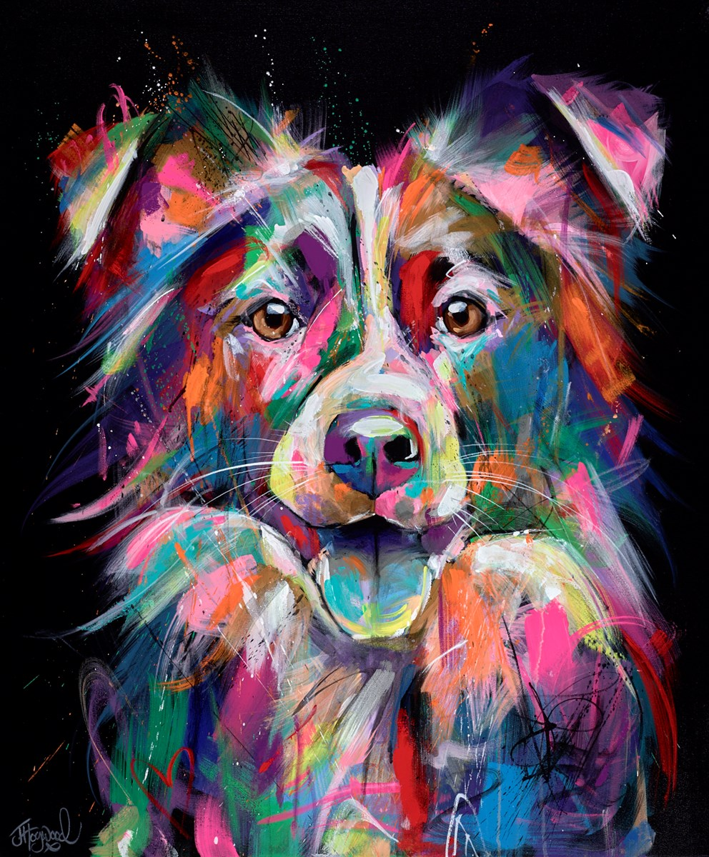 Bold and Bright Collie by jennifer hogwood -  sized 29x35 inches. Available from Whitewall Galleries